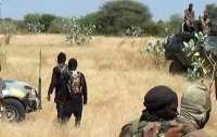 Террористы расстреляли группу туристов в популярном заповеднике