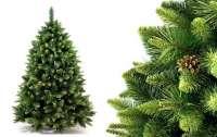 Церковники решили защитить елки