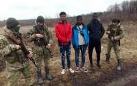 На границе с Польшей сотрудники ГПСУ задержали троих африканцев