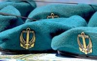 Украинские морпехи приняли участие в учениях в Грузии