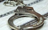 Венгерские полицейские задержали украинского таможенника при попытке перевозки марихуаны