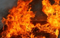 На Донетчине пожар уничтожил 22 здания
