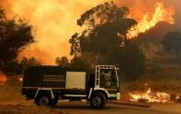 Итальянский пожарный поджигал лес, чтобы почувствовать адреналин