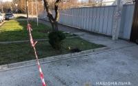 Ужасная трагедия в Запорожье: Двое детей подорвались на гранате