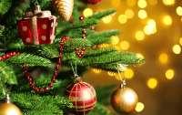 Стало известно, как украсят Новогоднюю елку