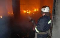 В Киеве из-за ночного пожара на СТО сгорели два автомобиля