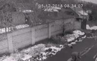 В Николаеве грабитель пытался задушить женщину (видео)