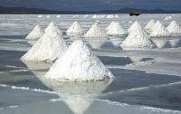 В Житомире откроют выставку с солеными скульптурами