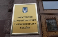 Украина за полгода экспортировала агропродукции на $8,6 млрд