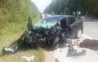 ДТП с пожаром в Житомирской области: трое погибших и один раненый
