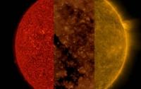 В NASA получили необычный снимок Солнца
