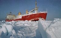 В Азовском море 2 украинских ледокола спасают горящий сухогруз с 14 моряками
