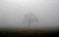 Украинцев предупредили о тумане