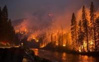 Рекордное число лесных пожаров зафиксировали в Финляндии