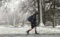 Во Флориде введен режим ЧП из-за приближения шторма