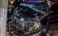 Жуткое ДТП в Днепре: пьяный водитель Volkswagen  влетел в дерево (видео)