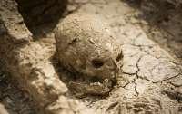 Находка века: ученые шокировали заявлением о возрасте человечества