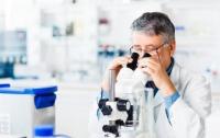 Найдены гены, помогающие выжить при раке поджелудочной железы