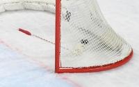 Шведский хоккеист умер от неизвестной болезни