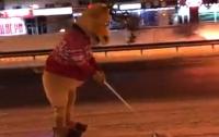 Лось на гироскутере помогал с уборкой снега в Киеве (видео)