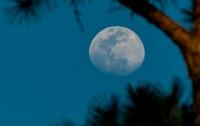Китай задумал отправить человека на Луну в ближайшие 10 лет