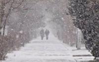 Весна в Украине: стало известно, какие регионы накроют снегопады