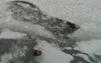 На льдине нашли тело ребенка