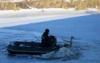 Киевские спасатели спасли примерзшего ко льду лебедя