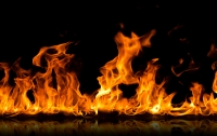В столице неизвестные подожгли созданный киевлянами сквер