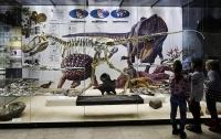 Ученые смоделировали убившее динозавров гигантское цунами