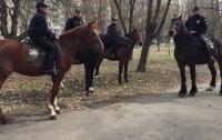 Лошадь из конной полиции сбила женщину на прогулке