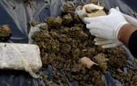 Евросоюз дает миллионы евро на борьбу с наркотрафиком