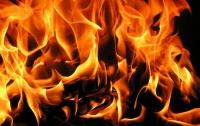 В Киеве ночью горело кафе