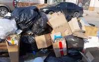 Оккупированный Крым потопает в мусоре