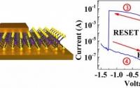 Атомисторы обеспечат работу нейроморфных компьютеров на частотах порядка 50 ГГц