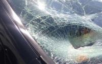 В Киеве под колеса фуры попал пешеход-нарушитель
