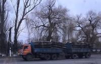 В Одесской области провели обыски по делу незаконных вырубок леса