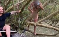 Мужчину чуть не съели крокодилы, пока от сбегал из тюрьмы