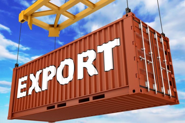 ВУкраинском государстве  назвали искусственными торговые ограничения состороны РФ