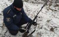 На Черниговщине задержали киевлянина, который убил краснокнижную лосиху