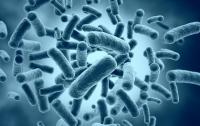Бактерии убили искупавшегося в море мужчину