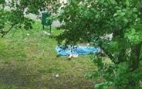 Тело человека медики и полиция осмотрели и оставили лежать на детской площадке
