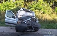 Лобовое ДТП в Винницкой области: травмы получили двое взрослых и трое детей