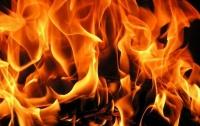 В Харьковской области сгорел дом с мужчиной
