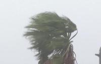 Японии угрожает ураганный ветер