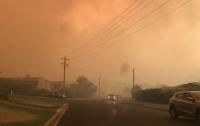 В Австралии бушуют лесные пожары, эвакуируют десятки городов