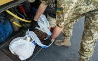 Гражданин Турции незаконно перевозил крупную партию янтаря (видео)