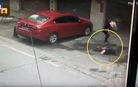 На китаянку с неба упала собака, женщину госпитализировали (видео)