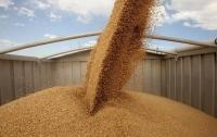 Украина установила рекорд по экспорту зерна