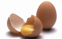Курица снесла огромное яйцо с